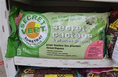 SECRET CACTEES ET PLANTES GRASSES